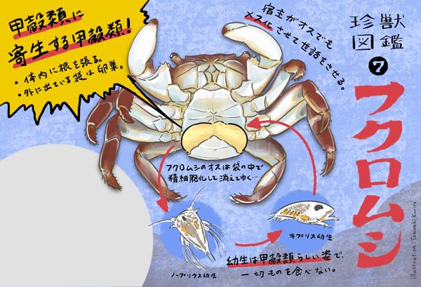 フクロムシイラスト「谷脇栗太」のPR画像