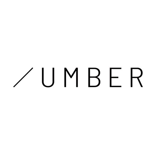 「株式会社アンバー」のロゴ