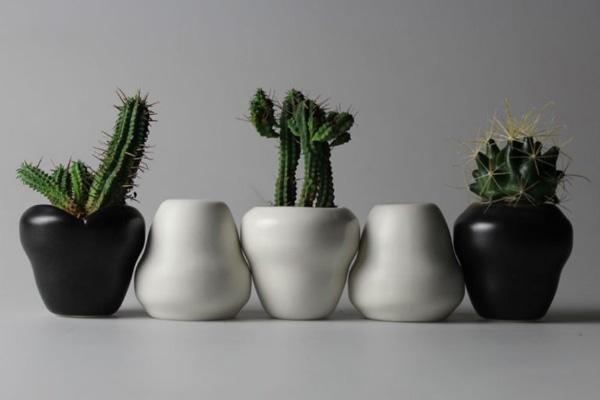 花器「SONAE合同会社」のPR画像