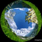 「有限会社イメージファクトリー」のPR画像