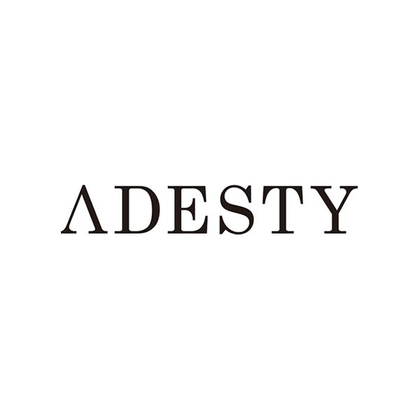 株式会社アデスティ ロゴ