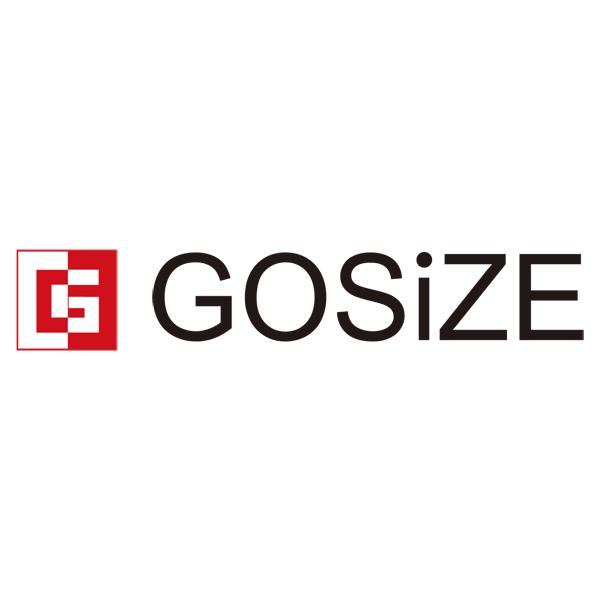 株式会社GOSiZEロゴ