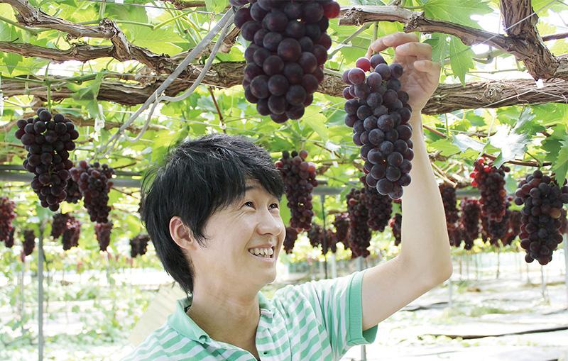ぶどう園の中村さん